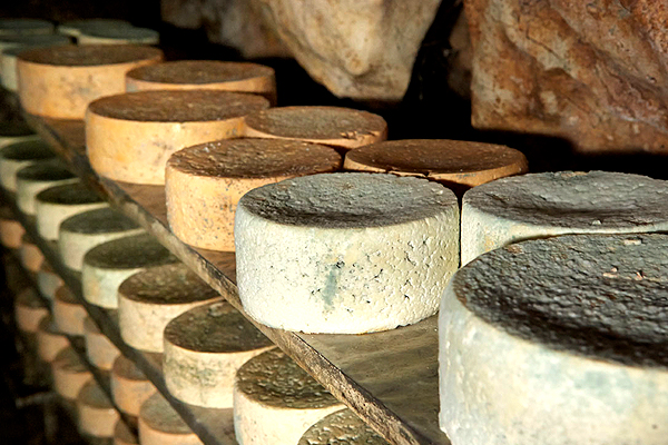 Calidad del queso Cabrales